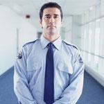 Empresas de Seguridad Privada.  Presentacion